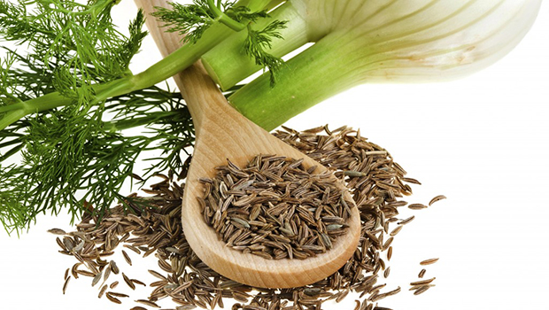 Fennel Tea for Babies