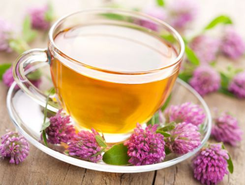 Best Herbal Tea for Relaxation